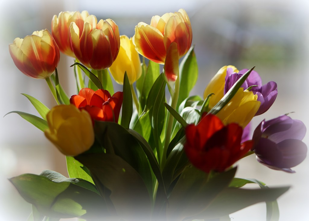 floral inspiration by quietpurplehaze