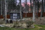 9th Feb 2019 - Backyard Sunrise