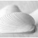shells softly 2