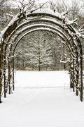 8th Feb 2019 - Gateway to winter