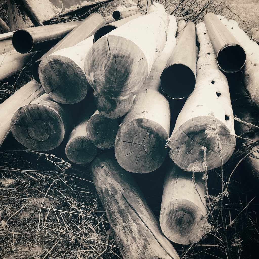 Pile of Wood by salza