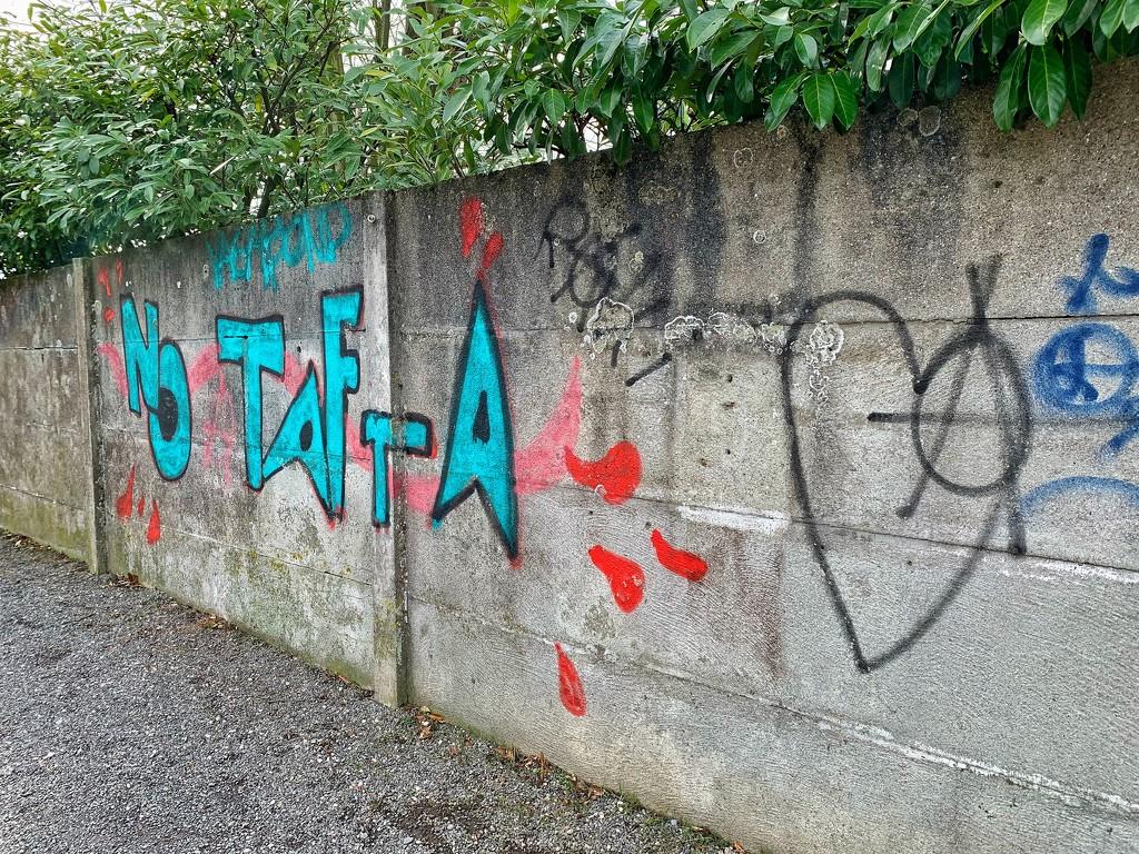 No tafta 🖤 by cocobella
