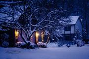 10th Feb 2019 - Winter night on Grist Run