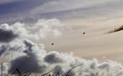 11th Feb 2019 - Lincolnshire Skies