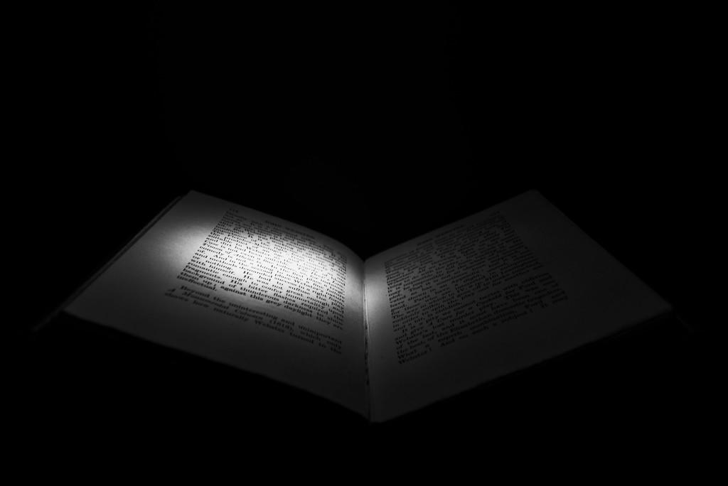 Reading by torchlight by rumpelstiltskin