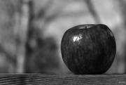 11th Feb 2019 - An apple a day for 7 days - day 1
