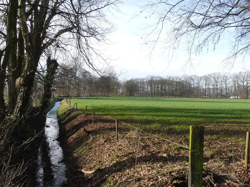 Landscape by ideetje