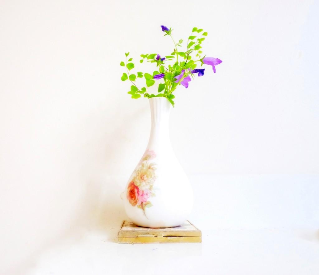 Vase by maggiemae