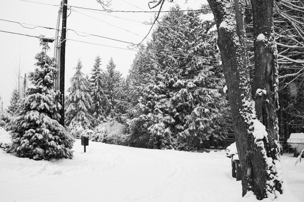 Go Away, Snow by epcello