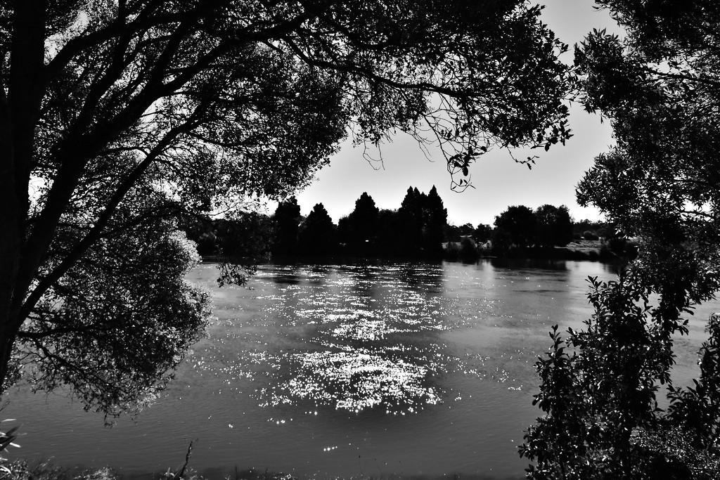 Waikato River Sparkles by nickspicsnz