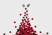 14th Feb 2019 - Capsule of Love - Take One Daily