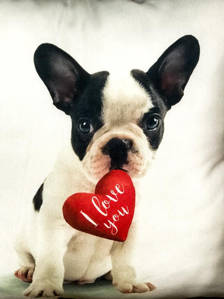 Happy Valentines day! by sugarmuser