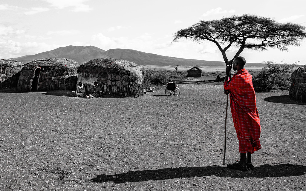 A Masai Flash of Red by taffy
