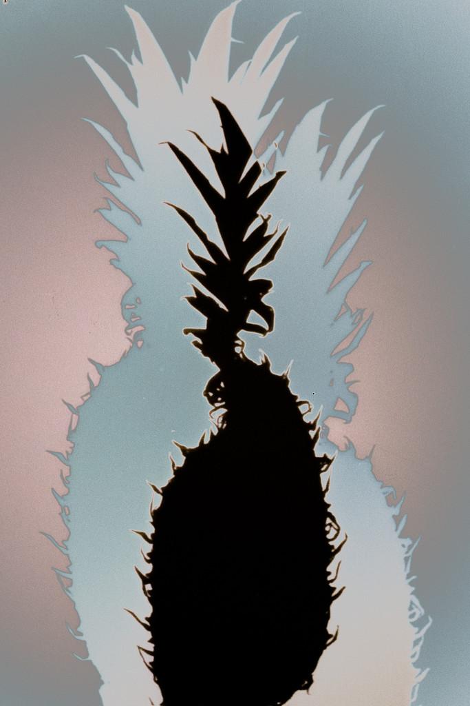 pineapple by vankrey