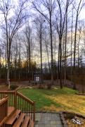 16th Feb 2019 - Backyard Reflections