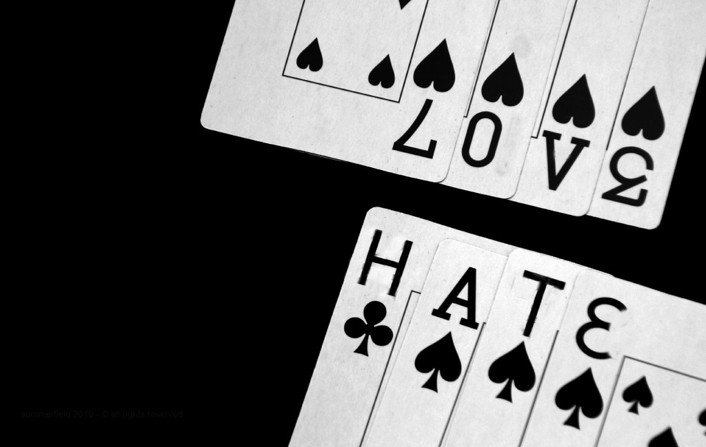 thin line between love and hate by summerfield