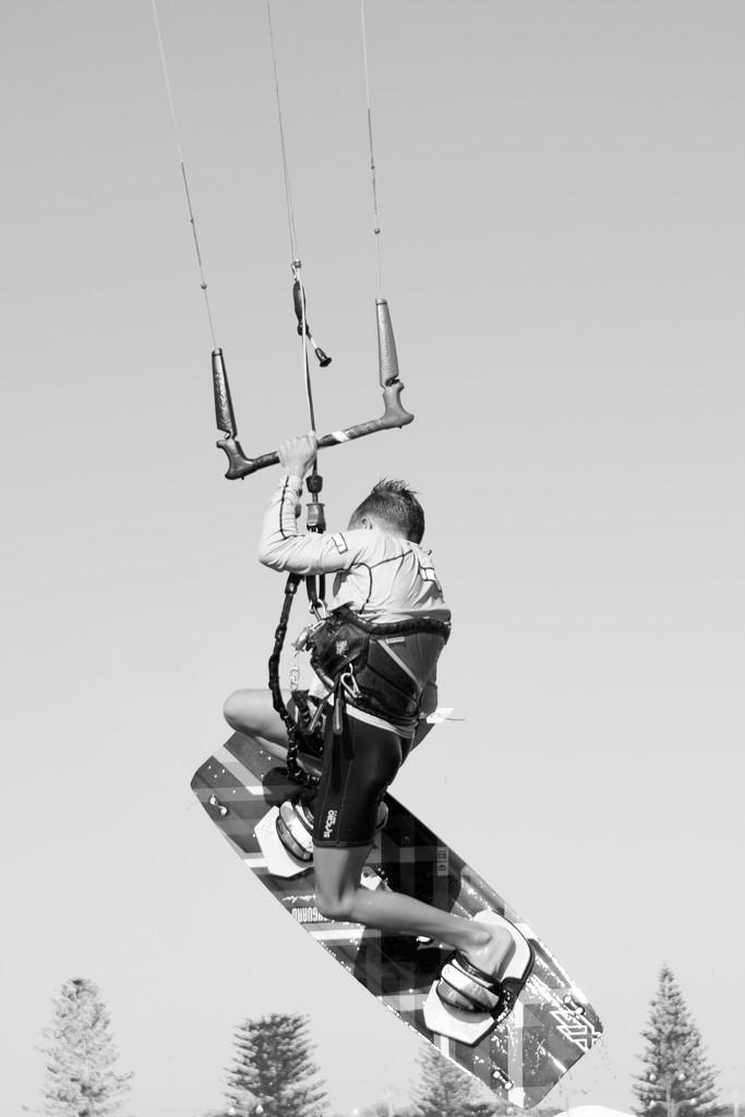 Flying High..._DSC6095 by merrelyn