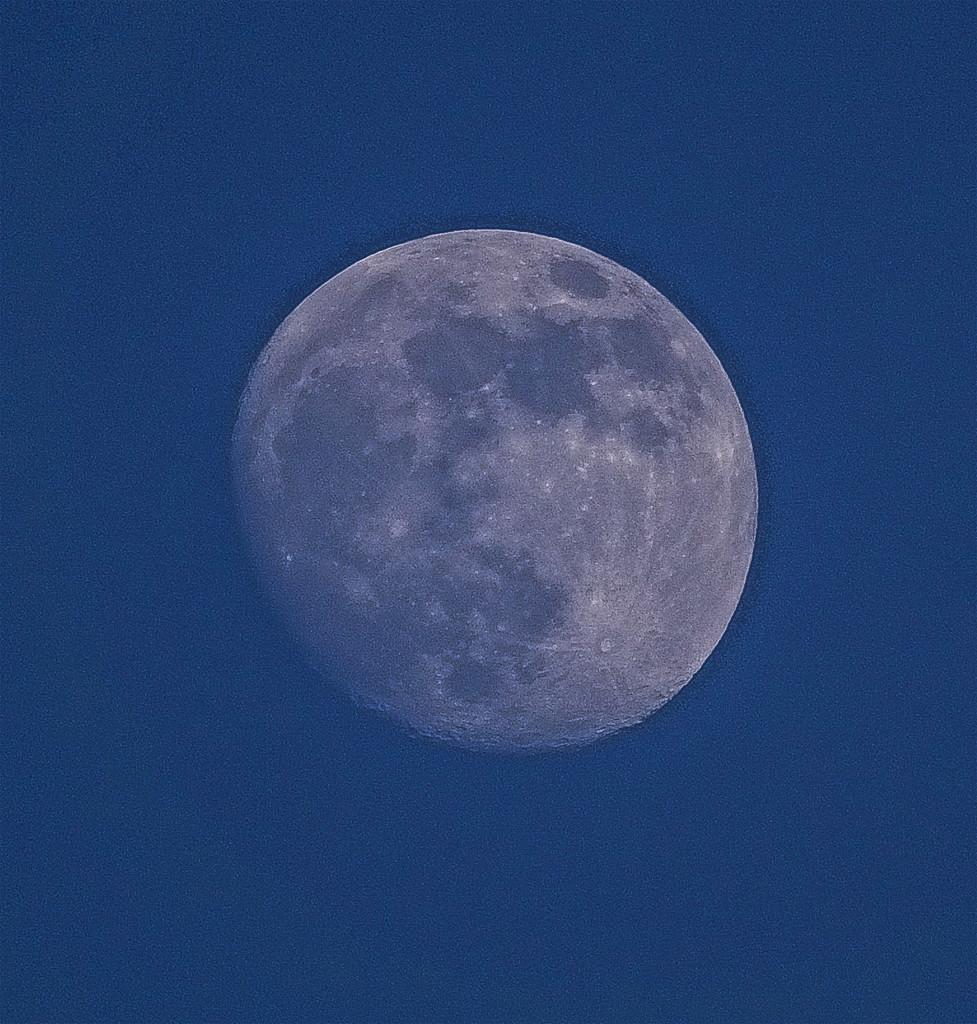 Teatime Moon by tonygig