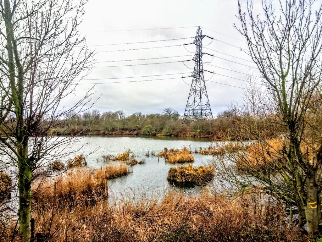 Pylon from Walthamstow Wetlands by boxplayer