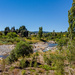 The Hutt River