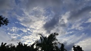 18th Feb 2019 - Wind Scattered Clouds ~