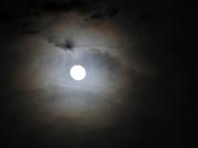 18th Feb 2019 - Moon