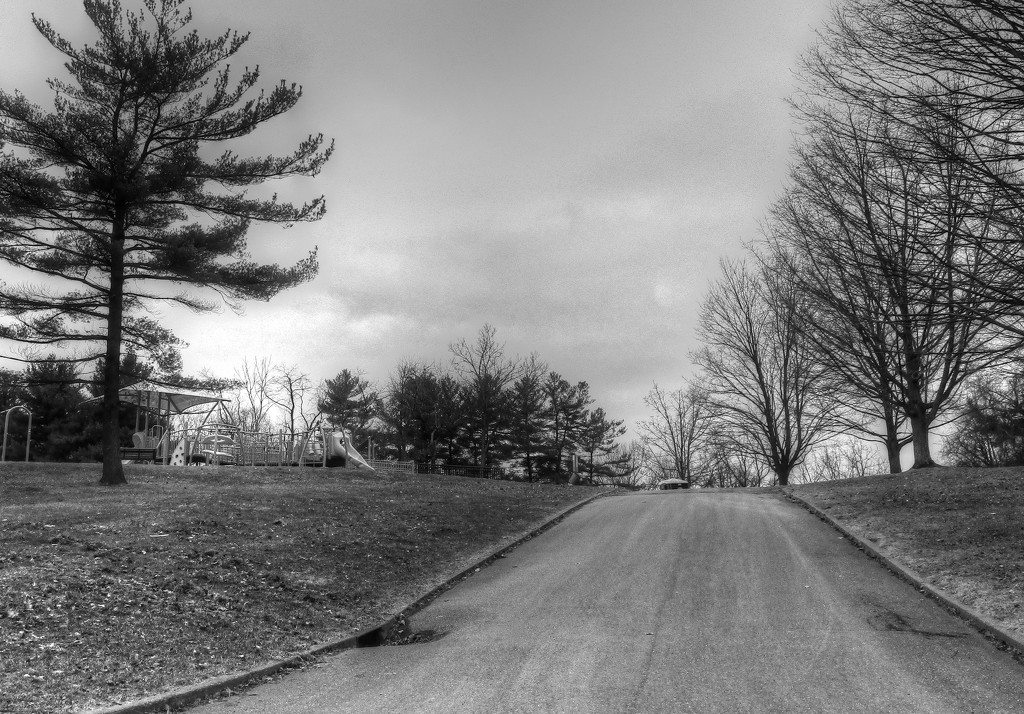 Road in the park by mittens