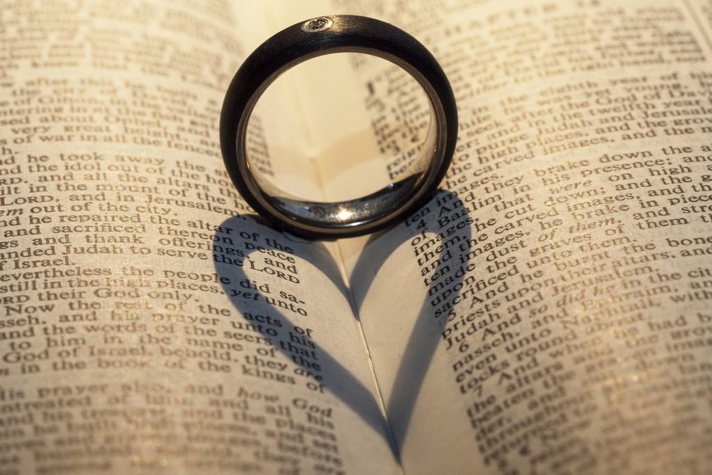 Love is .... by bizziebeeme