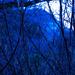 Blue Hill I
