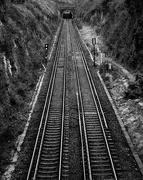 18th Feb 2019 - Railway Cut