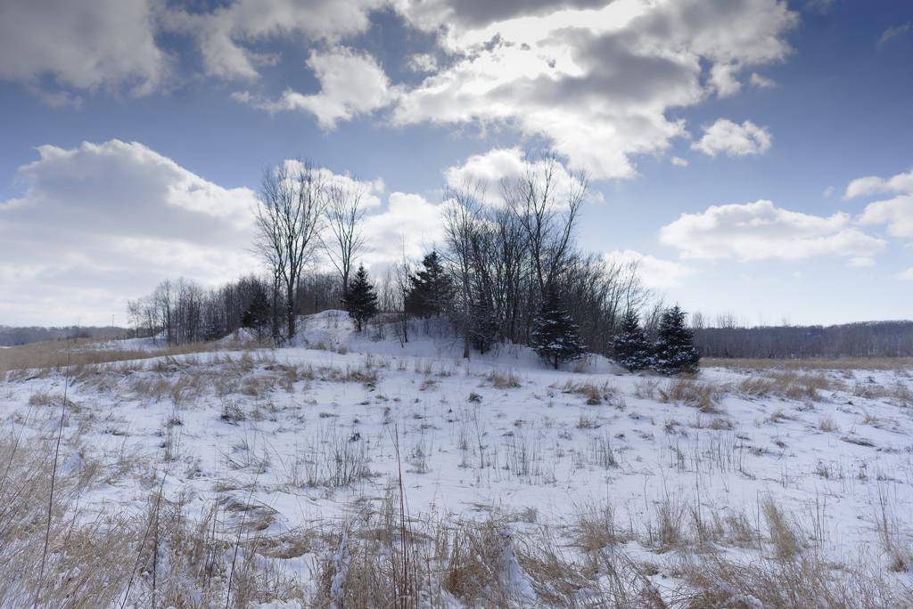 winter wonderland by rminer