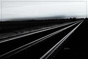 18th Feb 2019 - Silver Rails