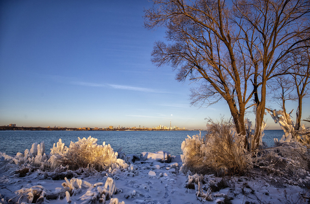 Humber Bay Park by pdulis
