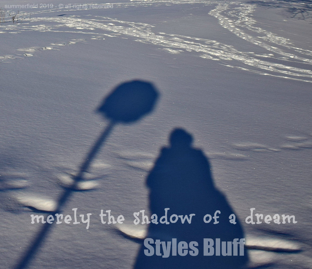 merely the shadow of a dream by summerfield