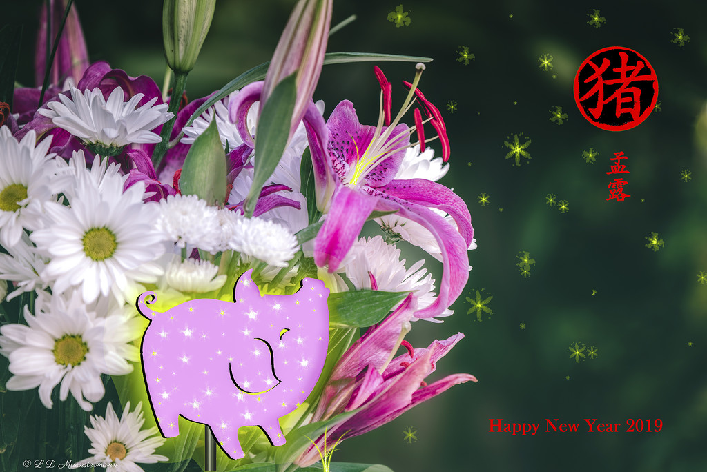 """""""Happy New Year!"""" ... by Weezilou"""