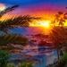 Starry Starry Sunset