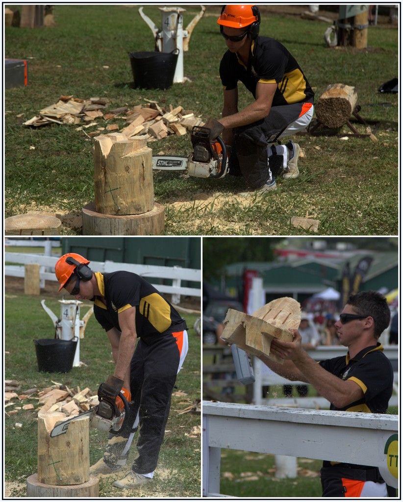 Chainsaw carving by dide