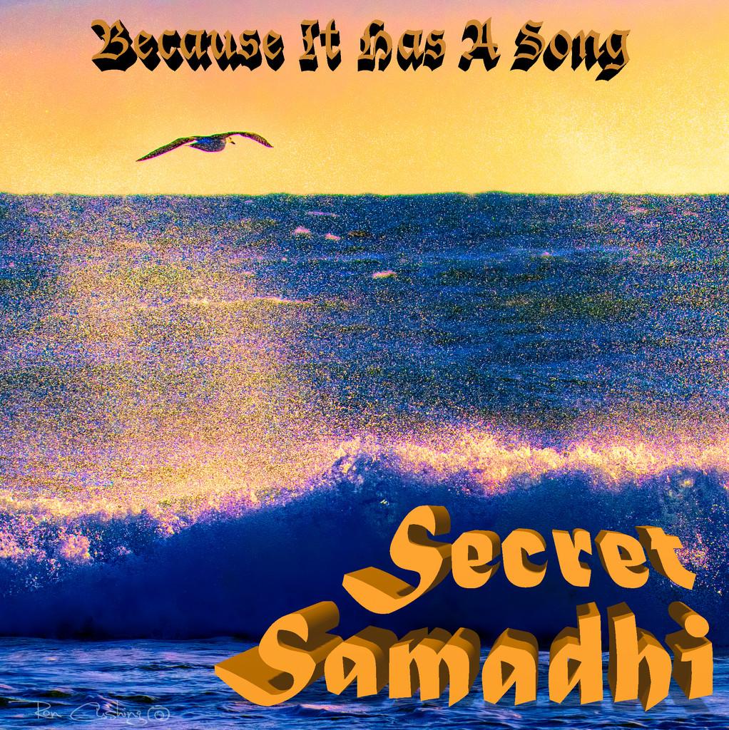 Secret Samadhi's Album by stray_shooter