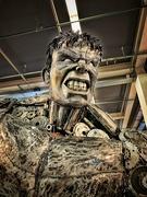 20th Feb 2019 - Man of steel or Hulk ?