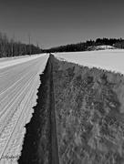 20th Feb 2019 - Snowbank