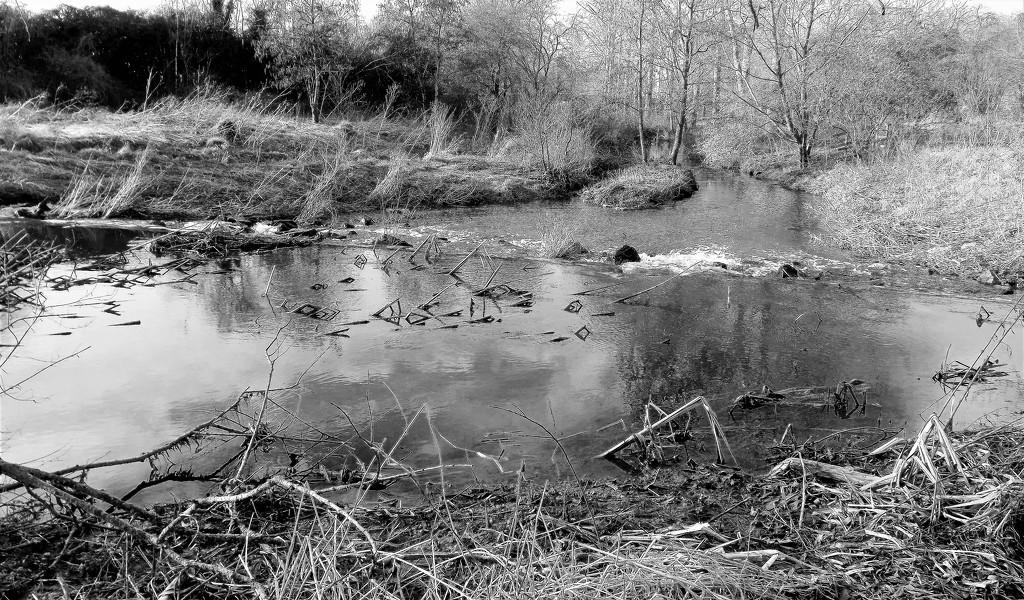 Biss Meadow Brook by ajisaac