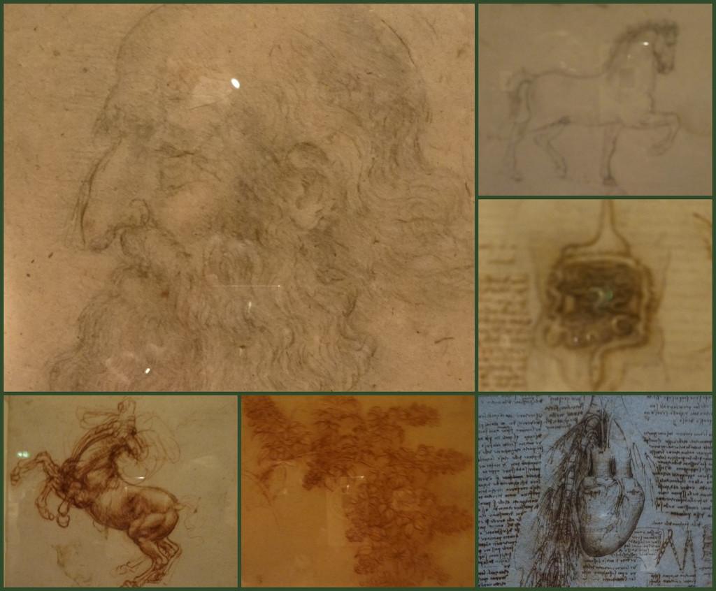 da Vinci by 30pics4jackiesdiamond