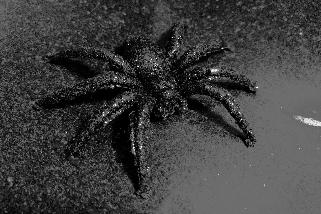 Fake Spider by ingrid01