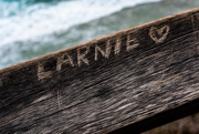 20th Feb 2019 - Larnie is loved