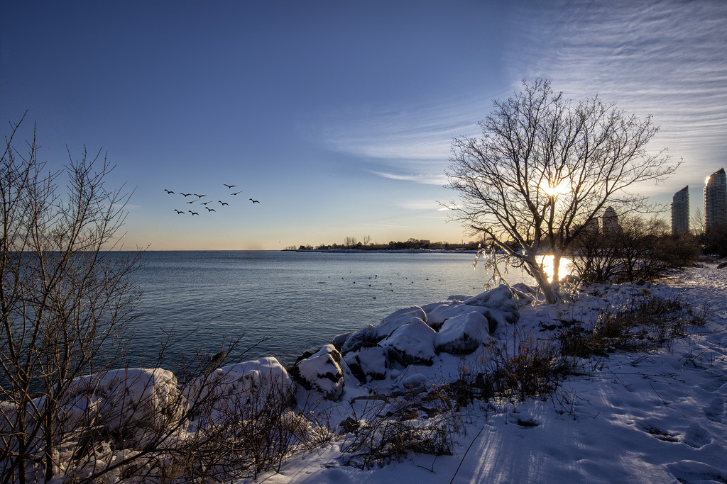 Winter Shoreline by pdulis