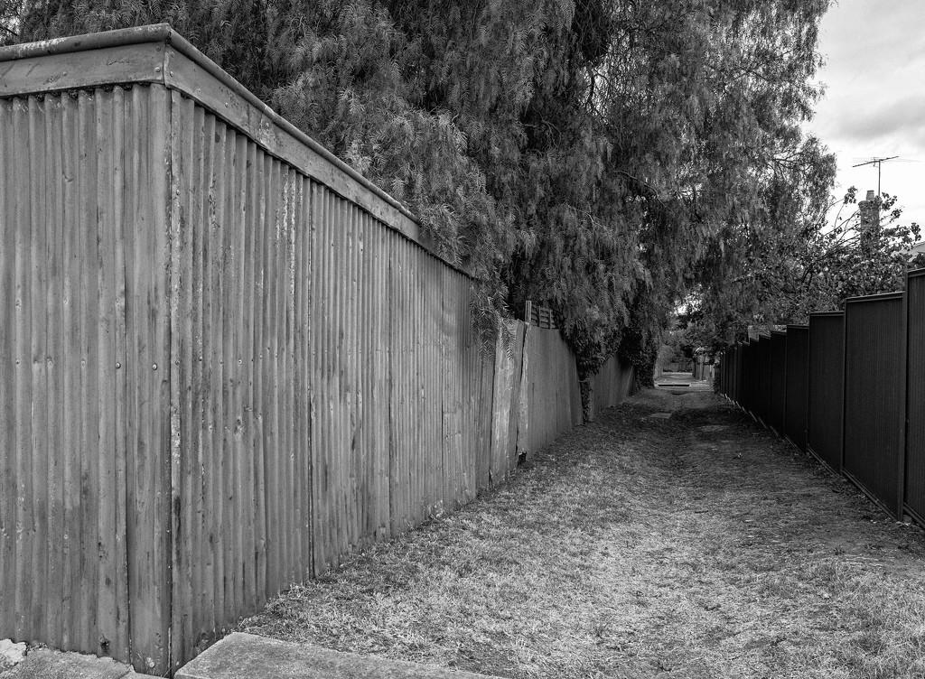 FORF10: #21 Grassy lane by golftragic