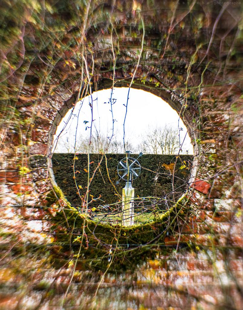 through the round window by pistache