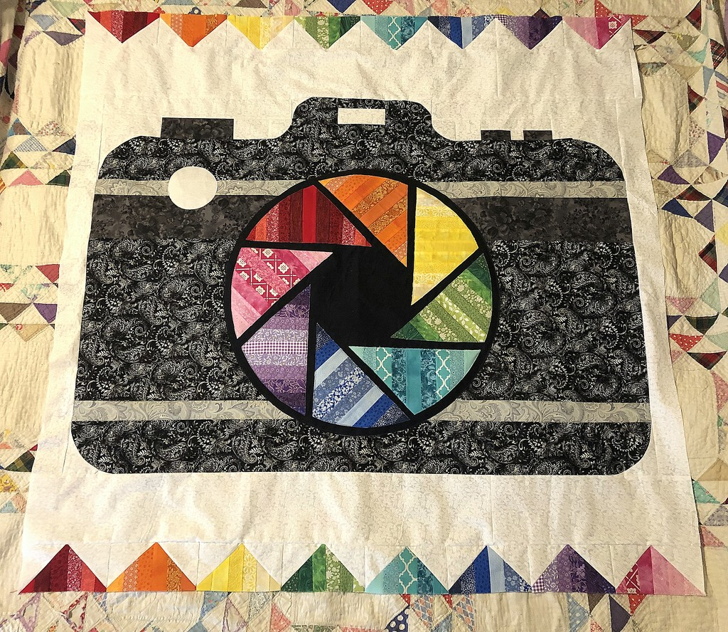 Finished quilt top by homeschoolmom