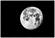 21st Feb 2019 - February Snow Moon