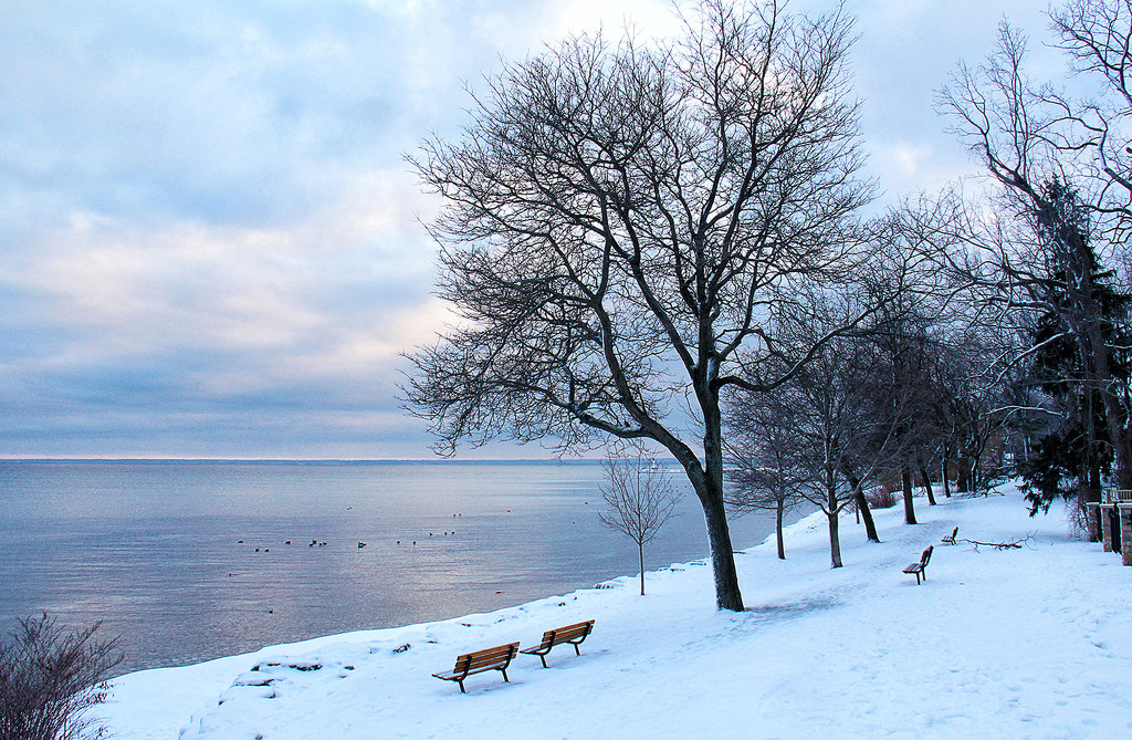 Winters Walk by pdulis